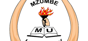 MZUMBE UNIVERSITY FOURTH CORPORATE STRATEGIC PLAN 2017/2018-2021/2022